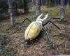Bugailiskis skulpturos gamtoje 1