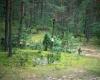 Kryžius-miške-kryžkelėje..-1200
