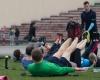Vilnius Challenge 2015 treniruote Vingio parke 1 (7)