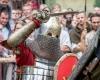 Jotvos vartai_Astos Sabonytes nuotr (9)-2400
