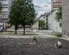 Marton Kallai_Community Gardens Budapest