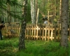 Sibiras 160_resize