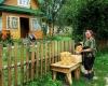10. Kapiniškių kaimo grybautoja Gabrielė... Jono krepšys jau pilnas laukia supirkėjų,,,-1200