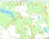 Planuojami iskirsti miskai Lakajos kaimo apylinkese