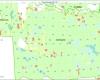 Planuojami iskirsti miskai pietinėje Labanoro regioninio parko dalyje