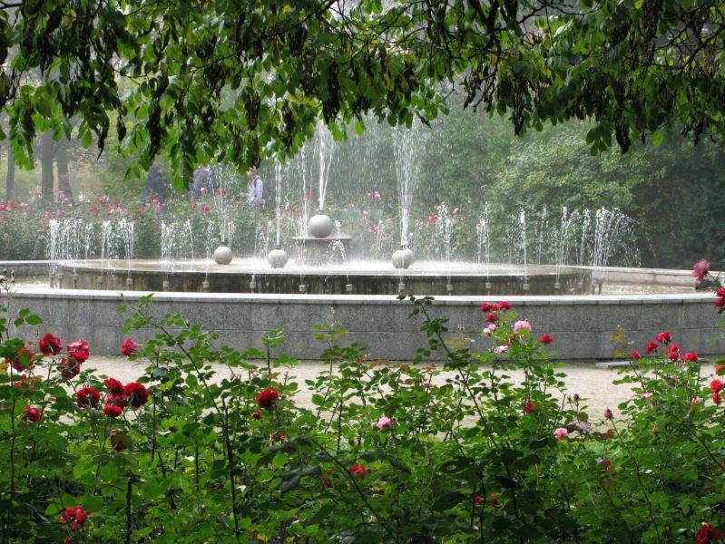 Alytaus miesto sodas. Zitos Stankevičienės nuotr.