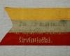 1. 7-ojo pestininku pulko 1920m VDKM E-6221
