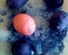 Rasuolė-Pupkytė-Margučius-šįmet-dažėm-su-šaldytom-mėlynėm.-Tamsūs-laikyti-pernakt-rožinis-kokį-pusvalandį.-Smagių-skanių-Velykų-1200