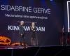 Sidabrine Gerve 2020-227-2400