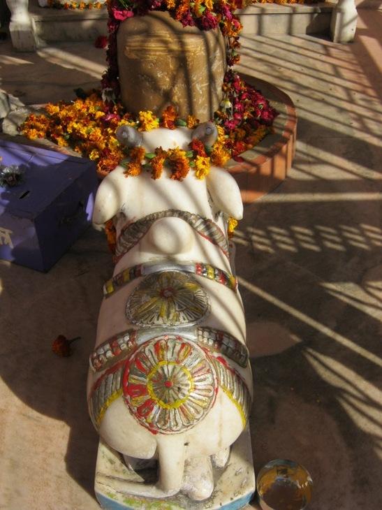 Saulės ženklas ant švento jaučio Saulės šventykloje Čitore