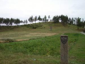 Pilių piliakalnis prie Kaltinėnų (Šilalės raj.)