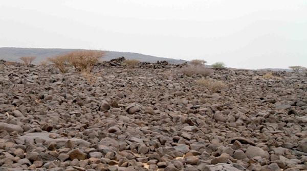 """D.Kenedžio bičiulio, gyvenančio Saudo Arabijoje, nufotografuota vieta, kurią nurodė australų archeologas, paliudijo tai, ką D.Kenedis įžvelgė """"Google Earth"""" nuotraukose, ©newscientist.com nuotr."""