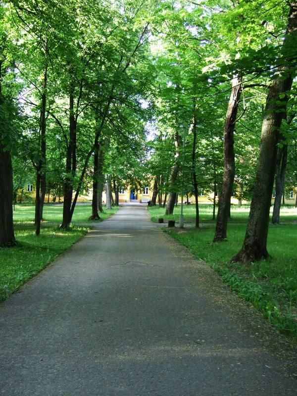 Sapiegų rūmų parko takas link išėjimo į Antakalnio gatvę, miestai.net nuotr.