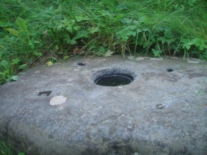 Liukonių akmuo, 2010 m. Vilijos Žebrauskaitės nuotr.