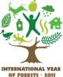 Tarptautiniai miškų metai 2011
