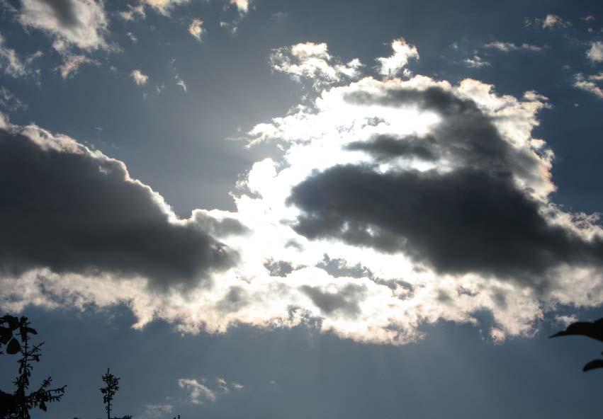 Žvilgtelėjau į kamuolinius debesis, kuriuose išvydau tavo veidą. Bet ten kaupėsi lietus...
