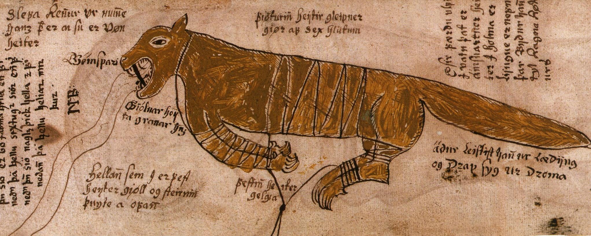 Vilkas Fenriras. Edda Snorra rankraščio fragmentas. Apie 1680 m.