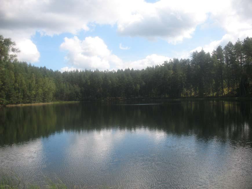 Labanoro regioninis parkas, Giedrelio ežeras