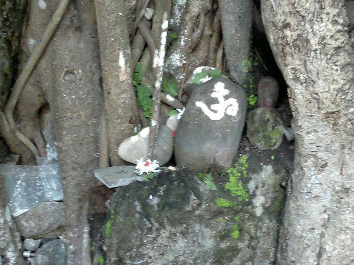 Indijoje įprasta pagarbinti Viešpatį per Šventuosius medžius bei akmenis | Nirvani nuotr.