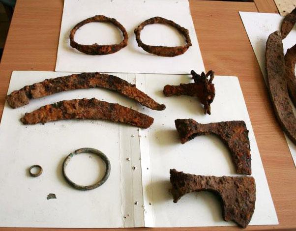 Juodųjų archeologų apiplėšto Apuolės senkapio radiniai.