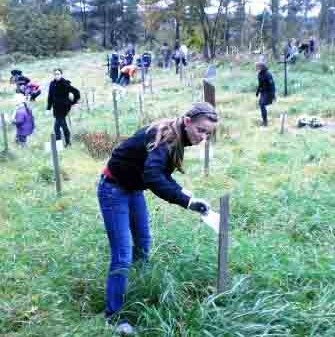 Vilniaus technologijų ir verslo profesinio mokymo centro mokiniai tvarko kapus