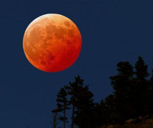 Mėnulio užtemimas | Alkas.lt nuotr.