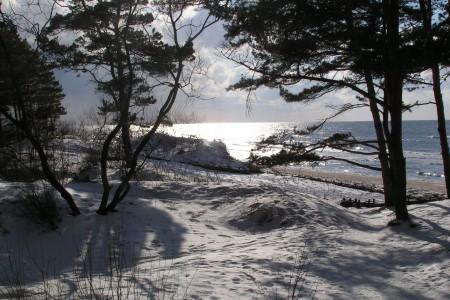 Palanga žiemą