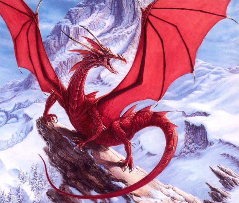 Raudonasis drakonas