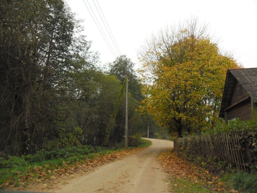 Daug Lietuvos kaimų turi magišką aurą/DELFI skaitytojo nuotr.