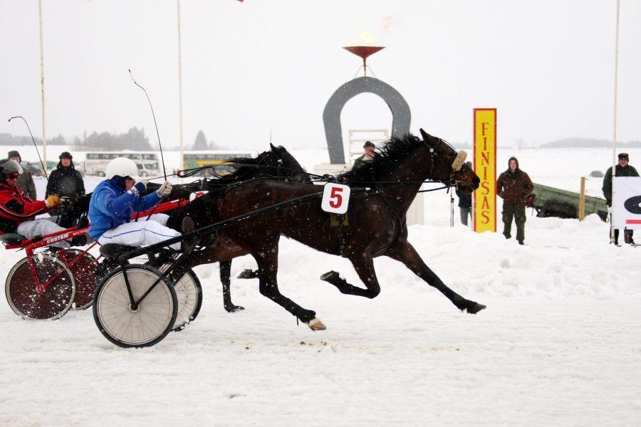Žirgų lenktynės Sartuose   organizatorių nuotr.