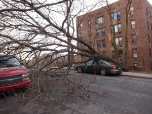 Vėjo žala | wunderground.com nuotr.
