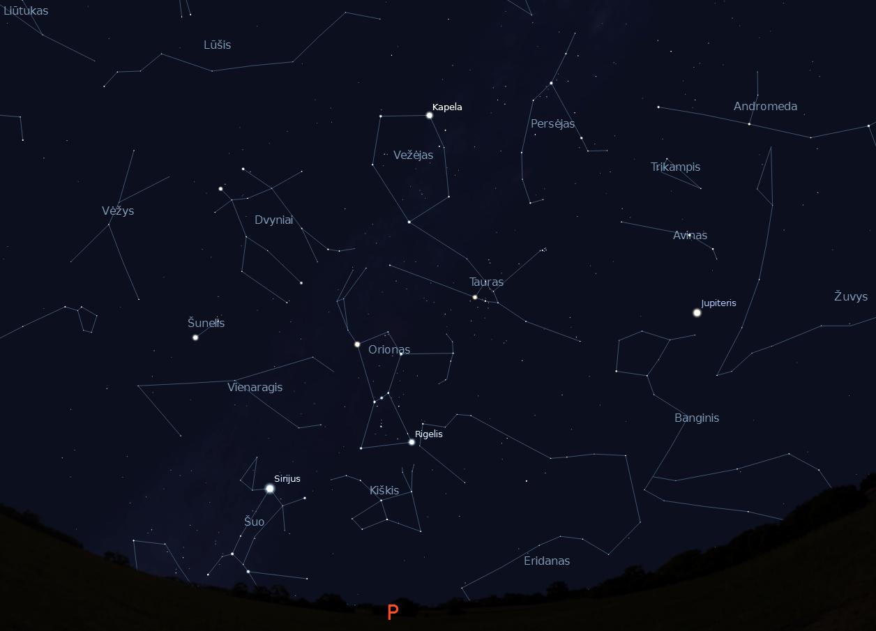 """Pietinės dangaus pusės žvaigždynai, vasario 15 d., 20 val., """"Stellarium"""" nuotr."""