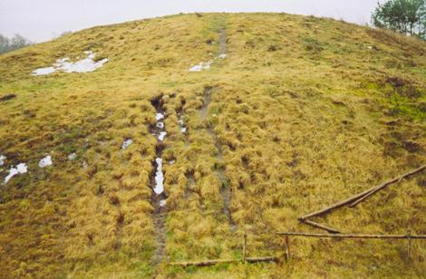 Raginėnų piliakalnis |nuotr. iš www.lad.lt