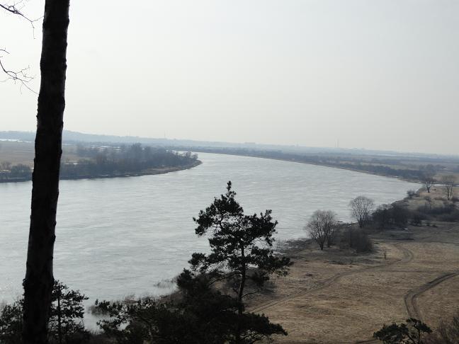 Nuo Rambyno kalno atsiveriantis vaizdas į Nemuną | Giedrės Skipitienės nuotr.