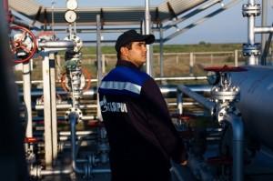 """""""Gazprom"""" tinklapio nuotr."""