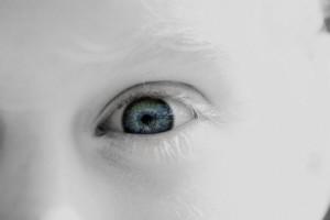 © Chrispoliquin, Dreamstime.com
