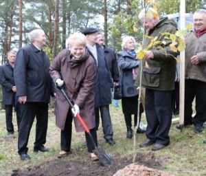 Lietuvos Prezidentėant ant Ladakalnio sodina ązuoliuką | lrp.lt nuotr.