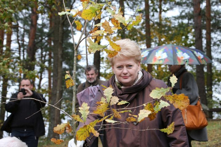 Lietuvos Prezidentėant ant Ladakalnio pasodino du ązuoliukus | lrp.lt nuotr.