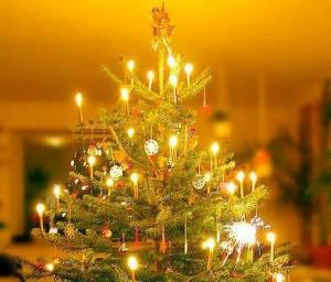 Kalėdinė eglutė | wikipedia.org nuotr.
