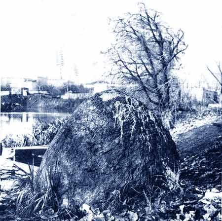 Taip atrodė šventvietė XX a. viduryje | tverzha.ru nuotr.
