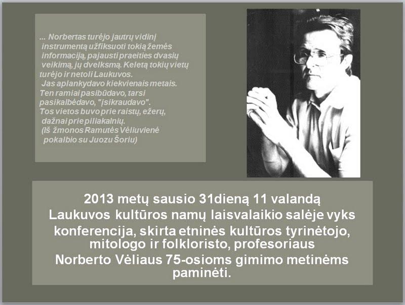 2013-01-31-veliaus-konferencija-laukuvoje
