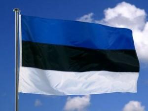Estijos vėliava | blogger.com nuotr.
