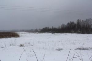 Novaraisčio pelkė žiemą | Valstybinės saugomų teritorijų tarnybos nuotr.