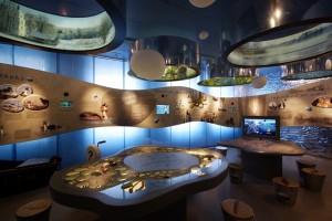 Sartų regioninio parko lankytojų centro ekspozicija | Valstybinės saugomų teritorijų tarnybos nuotr.