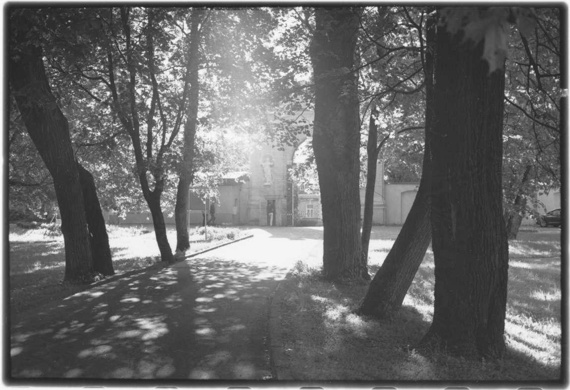 Sapiegų parkas, 2012 06. | D.Lebeckio nuotr.