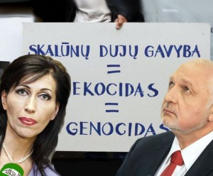 D.Matonienė ir V.Mazuronis teisinosi, kad komisija neturėjo kito pasirinkimo | Alkas.lt nuotr.