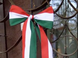 Kaune buvo paminėtas 1956 m. Vengrijos sukilimas | renginio rengėjų nuotr.