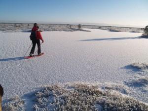 Estija žiemą