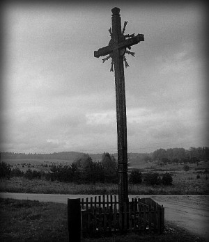 Kryžkelės kryžius (netoli Pocelonių kaimo, Alytaus r.) | autor. nuotrauka