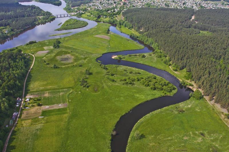 Dzūkijos nacionalinis parkas iš paukščio skrydžio | V.Polikšos nuotr.